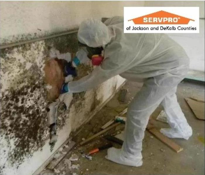 Mold Remediation Mold in your Scottsboro, Rainsville, or Fort Payne Home?