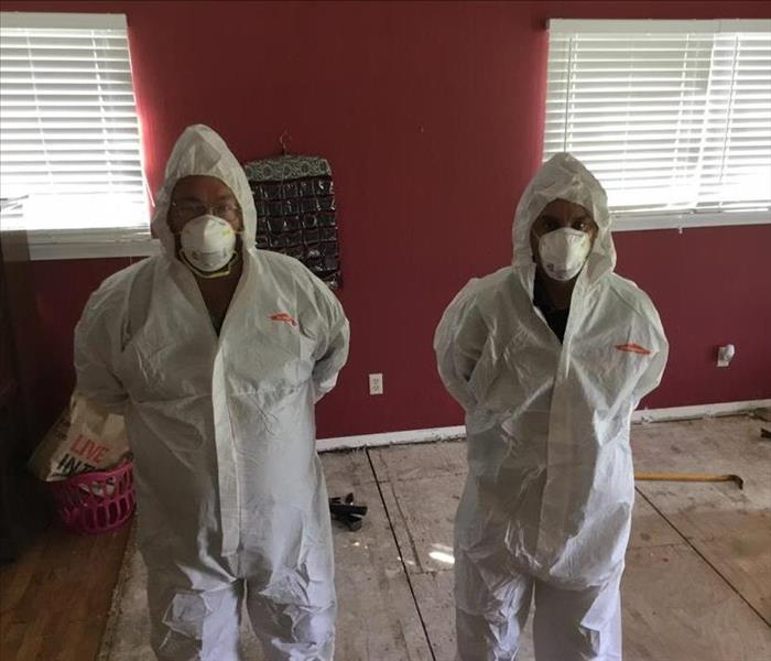 Mold Remediation PPE Equipment