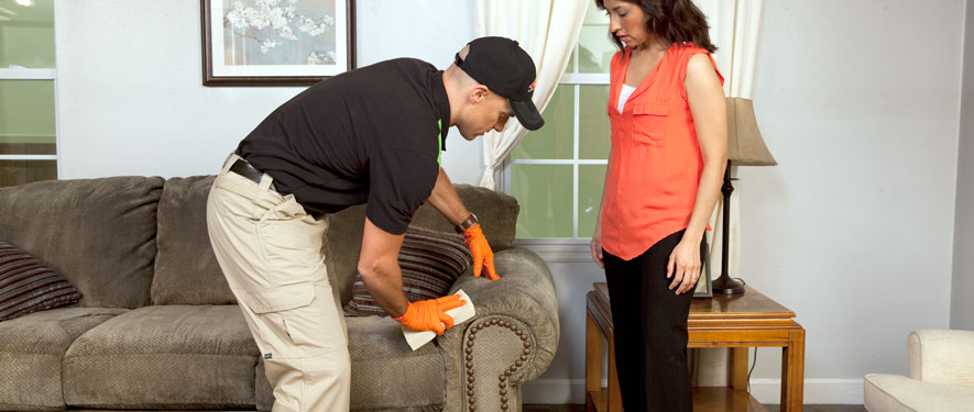 Scottsboro, AL carpet upholstery cleaning